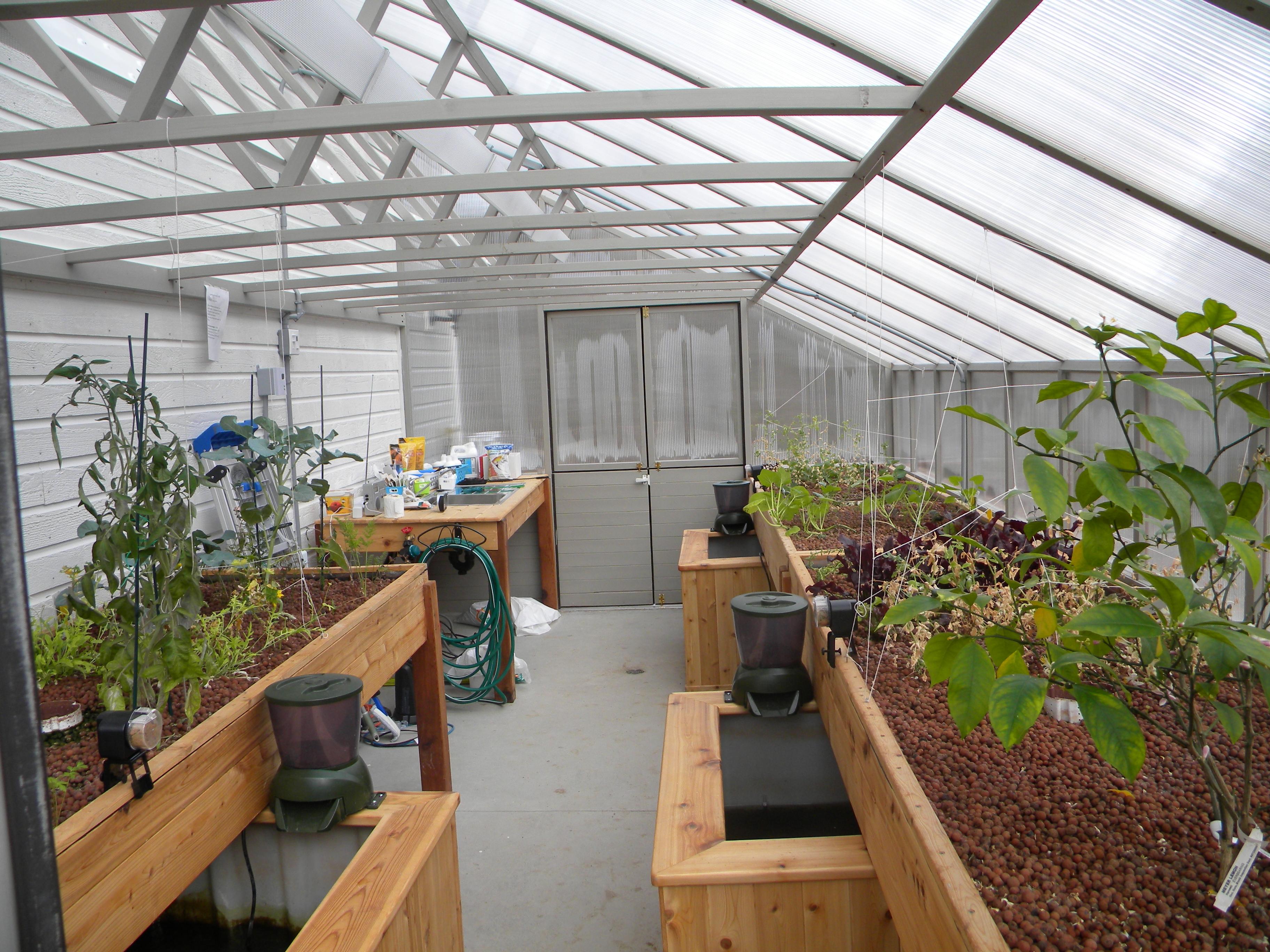Les serres shoji garden for Serre exterieur